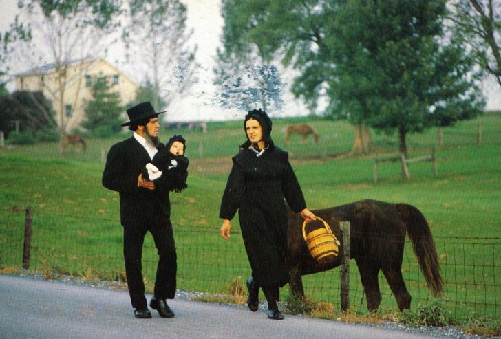 18 Unexpected Facts About The Amish That'll Make Your Skin Crawl_12