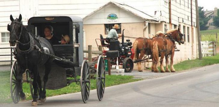 18 Unexpected Facts About The Amish That'll Make Your Skin Crawl_2