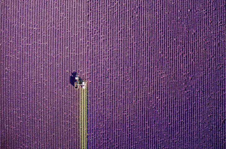 25 Stunning Drone Pics That Will Change How You See The World_20