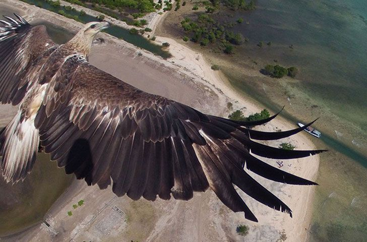 25 Stunning Drone Pics That Will Change How You See The World_24