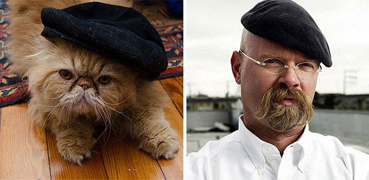 what-a-magic-30-animals-that-totally-look-like-celebrities_19