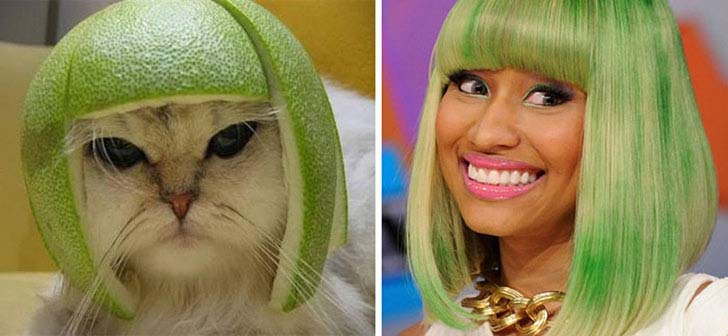 what-a-magic-30-animals-that-totally-look-like-celebrities_26