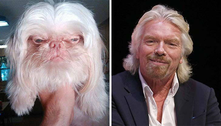 what-a-magic-30-animals-that-totally-look-like-celebrities_8
