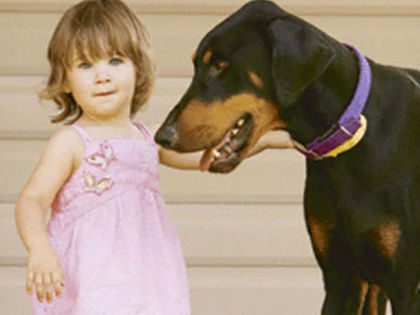 Mom Is Horrified When Her Doberman Drags Her Baby Until She Sees Why